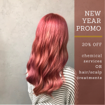 Black Hair Salon CNY Promo